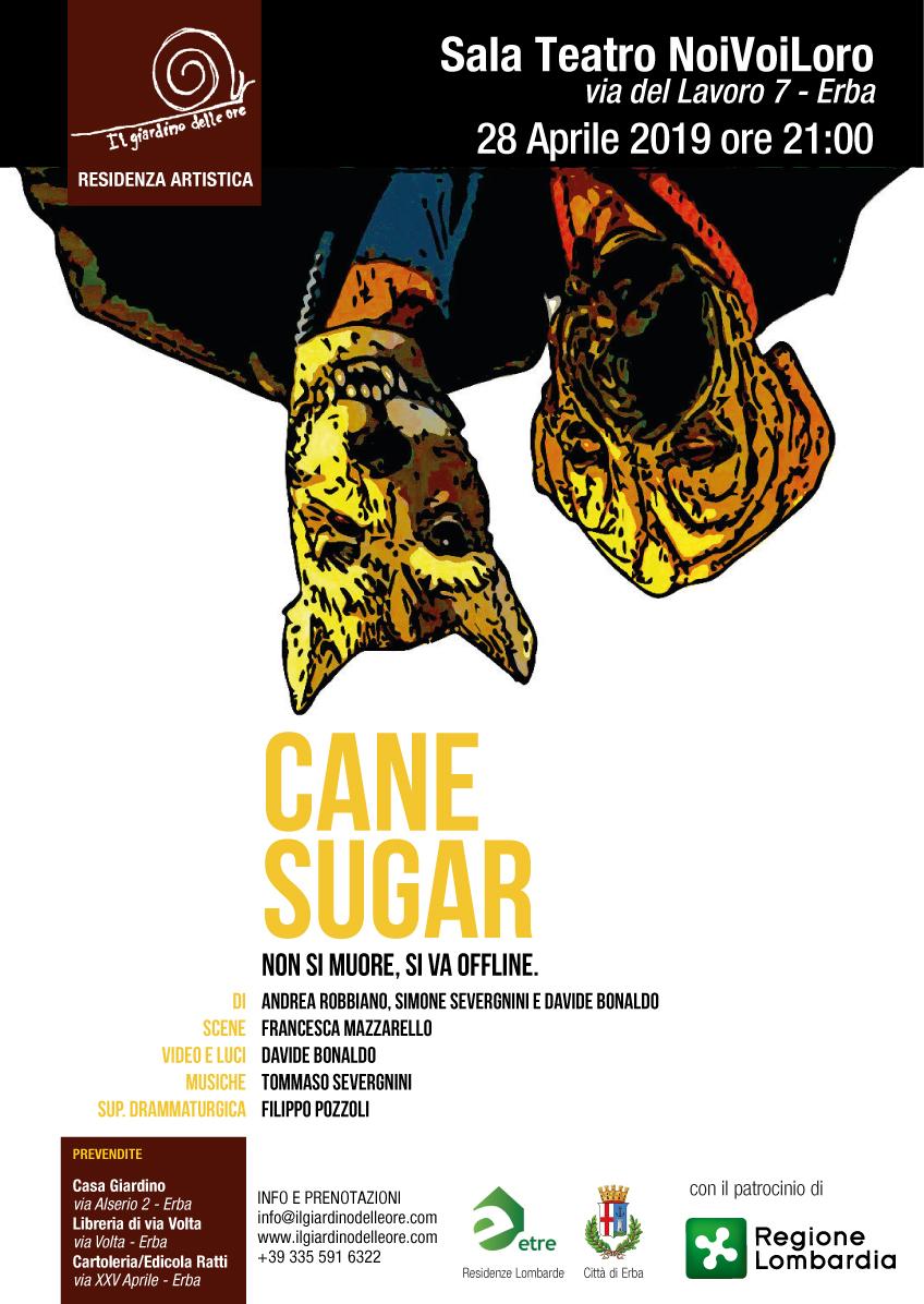 CANE-SUGAR-19